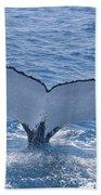 Humpback Whales Beach Towel