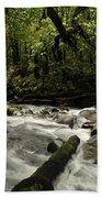 Jungle Stream Beach Towel