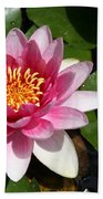 Pink Lotus Beach Towel
