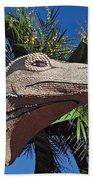 Rose Parade  Beach Towel