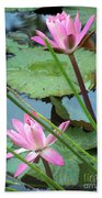 Pink Water Lily Pond Beach Towel
