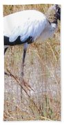 Wood Stork Beach Towel