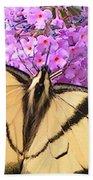 #859 D480 Swallowtail 2010.jpg Beach Towel