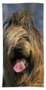 Briard Dog Beach Towel