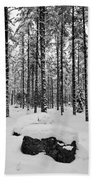 Pine Forest Winter Beach Towel