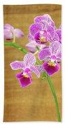 Purple Orchid-12 Beach Towel