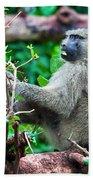A Baboon In African Bush Beach Towel