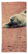 A Baboon On African Road Beach Towel