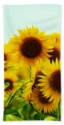 A Beautiful Sunflower Field Beach Towel