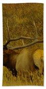 A Big Bull Elk Beach Towel