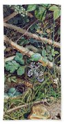 A Birds Nest Among Brambles Beach Towel