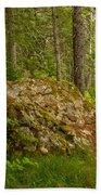 A Boulder In The Rainforest Beach Towel