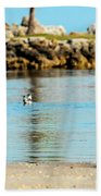 A Boy Searches The Water At Matheson Beach Towel