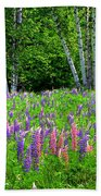 A Breathless Moment Among Lupine Beach Towel