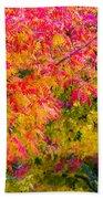 Autumn In Yountville, California Beach Towel