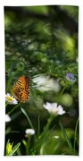 A Butterfly's World Beach Towel by Belinda Greb