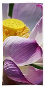 A Casual Water Lily Beach Towel