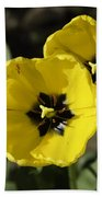A Couple Of Bright Yellow Tulip Flowers Beach Towel