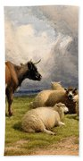 A Cow And Five Sheep Beach Towel
