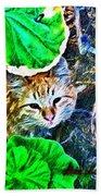 A Curious Cat Beach Towel
