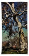 A Day Like This Beach Towel by Laurie Search