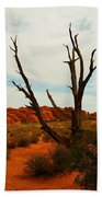 A Dead Tree Foreground A Maze Of Rocks Beach Towel