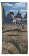 A Deinonychosaur Leaves Tracks Beach Towel