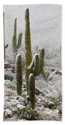 A Desert Blizzard  Beach Towel by Saija  Lehtonen