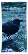 A Dipper On A Rock Beach Towel