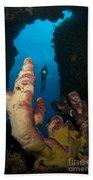 A Diver Looks Into A Cavern Beach Towel by Steve Jones