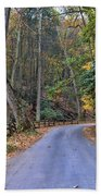 A Drive In The Country Beach Towel by Paul Ward