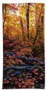 A Fall Forest  Beach Towel