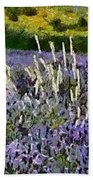 A Field Of Lavender Beach Towel