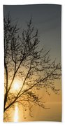 A Filigree Of Branches Framing The Sunrise Beach Towel