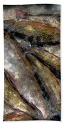 A Fine Catch Of Trout - Steel Engraving Beach Towel