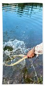 A Fly Fisherman Pulls A Fish Beach Towel