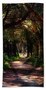 A Forest Path -dungeness Spit - Sequim Washington Beach Towel
