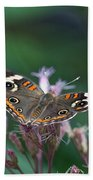 A Friendly Butterfly Smile Beach Towel