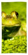 A Frogs Day Beach Towel