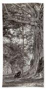 A Gentleman Sitting Beneath A Large Native Tree In British Ceylon Beach Towel