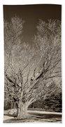 A Giant Sleeps Sepia Beach Towel