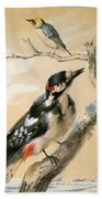 A Great Spotted Woodpecked And Another Small Bird Beach Towel