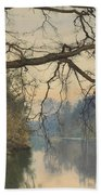 A Great Tree On A Riverbank Beach Towel