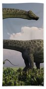 A Herd Of Diplodocus Sauropod Dinosaurs Beach Towel