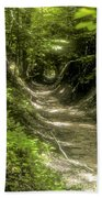 A Hole In The Forest Beach Towel by Bob Phillips