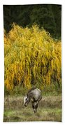 A Horse And A Willow Tree Beach Towel
