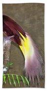 A Large Bird Of Paradise Beach Towel