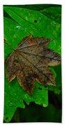 A Leaf Upon A Leaf Beach Towel