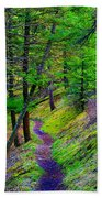A Magical Path To Enlightenment Beach Towel