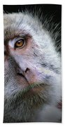 A Monkey's Look Beach Towel